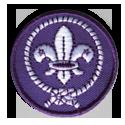 scoutisme_mondial_masculin
